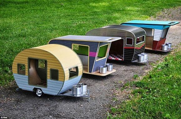 pet-camper03
