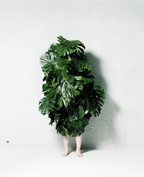 leafman001