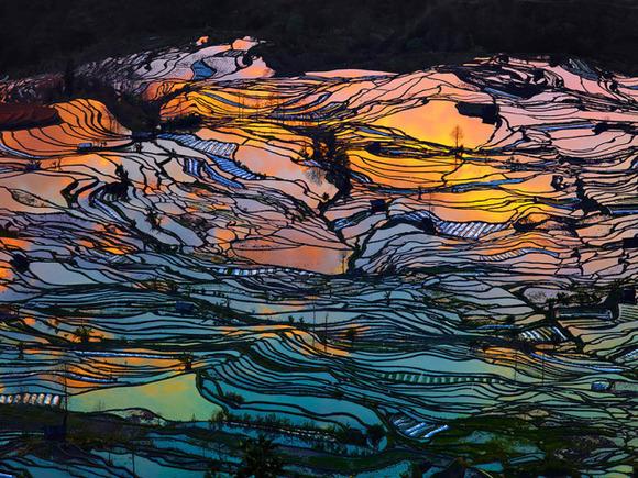 terraced-rice-fields-1__880-650x488