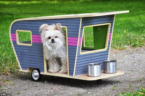 pet-camper06