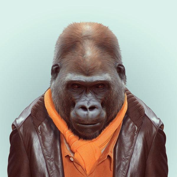 3-animal-portrait-photography