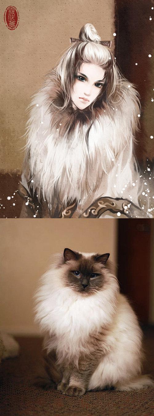 cats-anime-ladies-13
