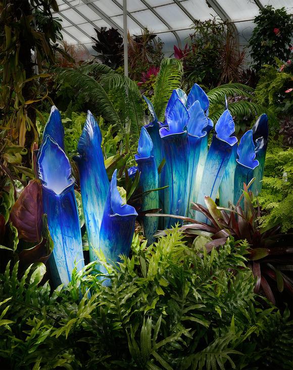 glass-flowers-jason-gamrath-15__880