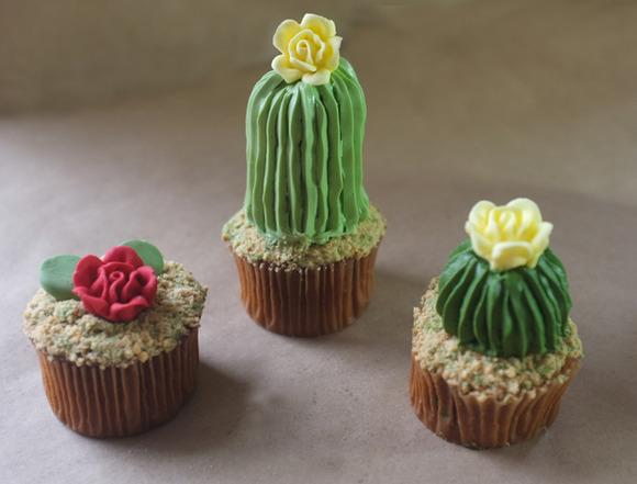 ribbed-cacti