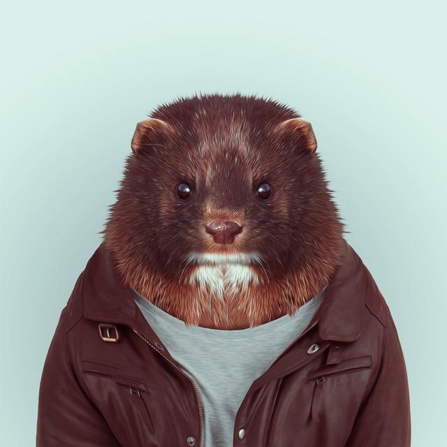 35-animal-portrait-photography