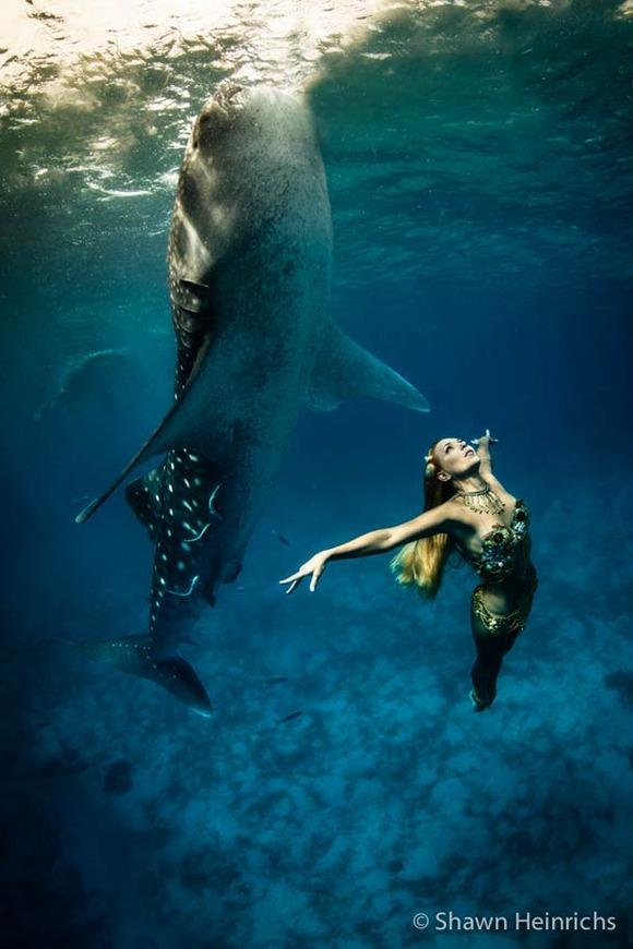 Shawn-Heinrichs-photography-underwater-1