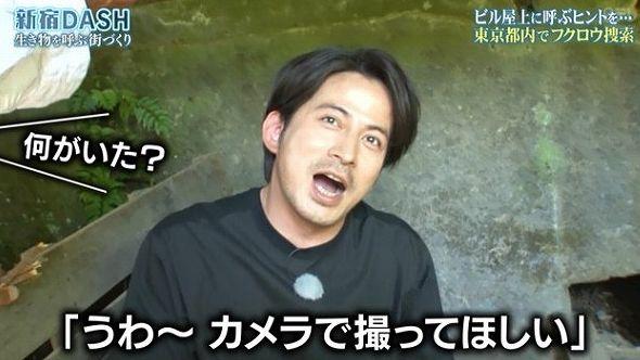 『ザ!鉄腕!DASH!!』TOKIOと岡田准一さんが奥多摩でフクロウ捜索をする