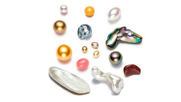 日本の技術チートで世界の真珠産業が壊滅に追い込まれた話