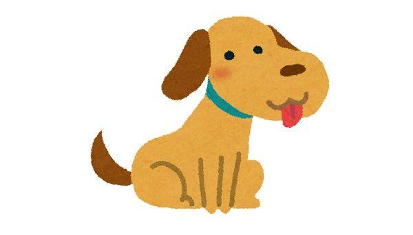 「犬は好きだけど糞尿が嫌だから飼わない」という意見が叩かれるのはおかしい