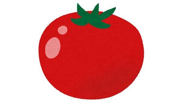 トマト嫌いなら全員が共感する画像