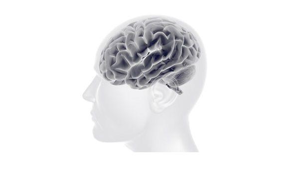尿意の高揚による無関係領域のインパルス制御促進の研究
