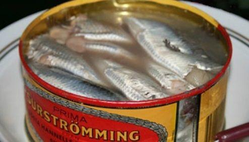 スウェーデンの気持ち悪い食べ物博物館の工夫にツッコミ「そういう問題じゃない」