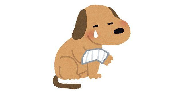 犬を虐待して取り上げられた飼い主がテレビの取材に反論