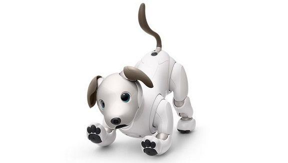 ソニーの株主総会で猫型のアイボがない理由を聞いた結果