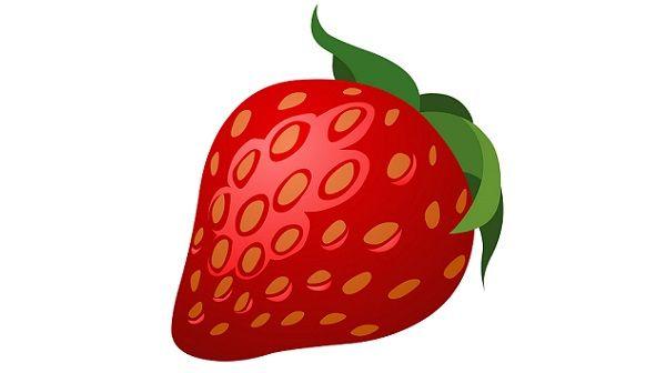 イチゴ農家がインスタ映えにキレる