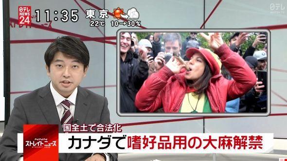 日本政府「カナダに行っても絶対大麻に手を出さないように!」