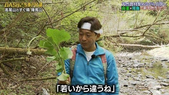 『ザ!鉄腕!DASH!!』TOKIOが高尾山の隣にある都民も知らない陣馬山をPR