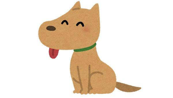 お坊さん「犬は畜生界に行くので浄土では一緒になれませんが…」その後の一言に驚き