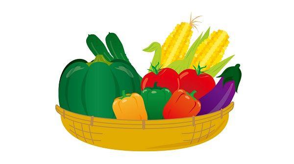 捨てられる野菜をペースト状にして乾燥させた「野菜シート」が開発される