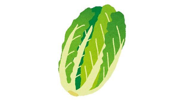野菜が道路で轢かれて世界樹になる