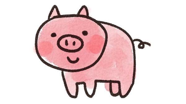 スーパーで売られていて衝撃を受けた仔豚の画像