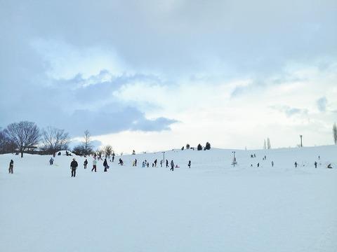 国営公園 雪原1