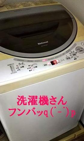 洗濯機フンバッ