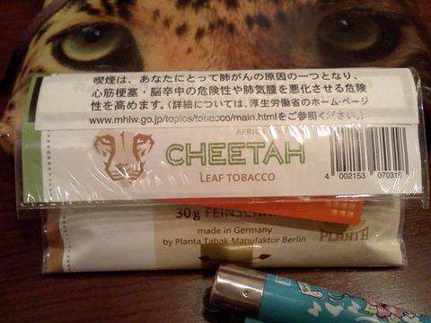 20171211-cheetah-africa-2