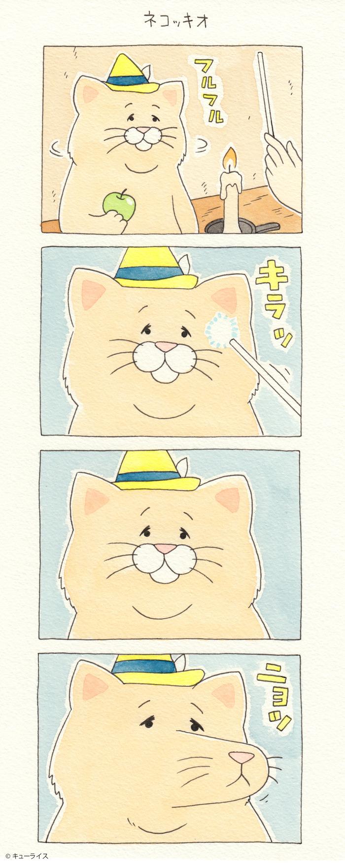 ネコノヒー5巻 ネコッキオ1