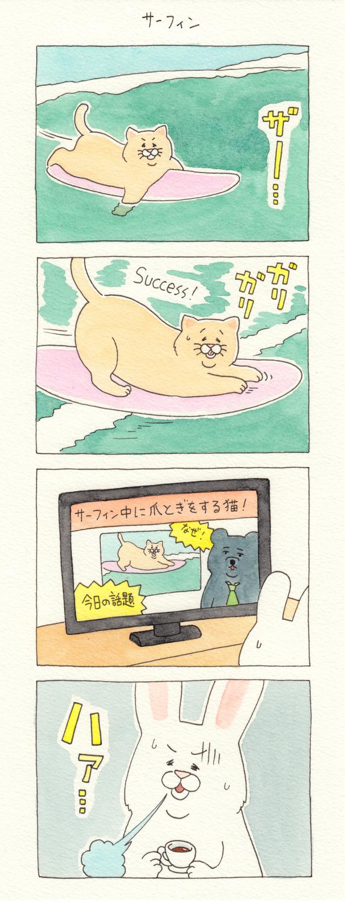 ネコノヒー サーフィン