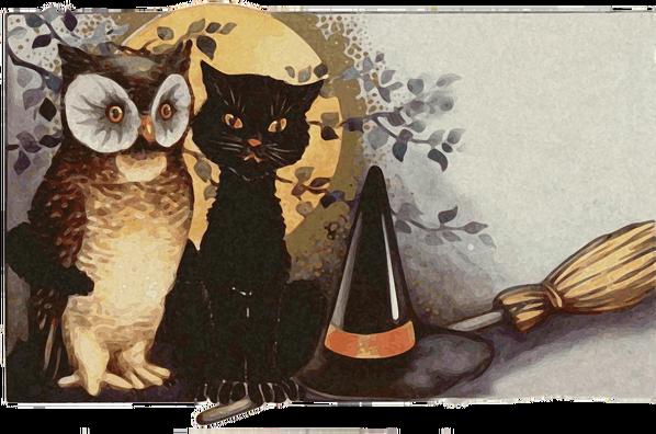 owls-1461952_960_720