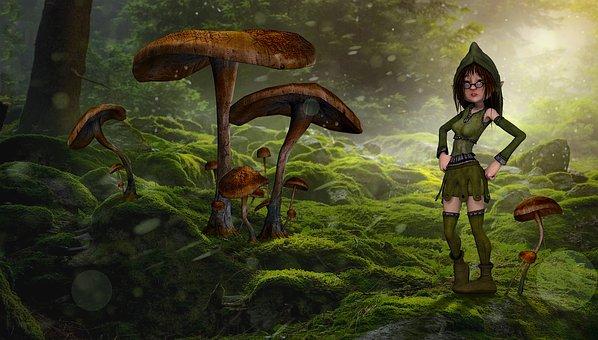 mushrooms-2279942__340
