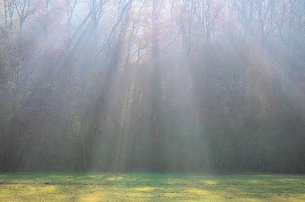 light-beam-3842401_960_720