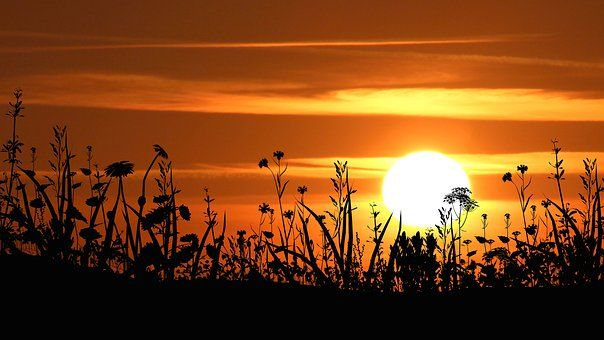 sunset-3047397__340