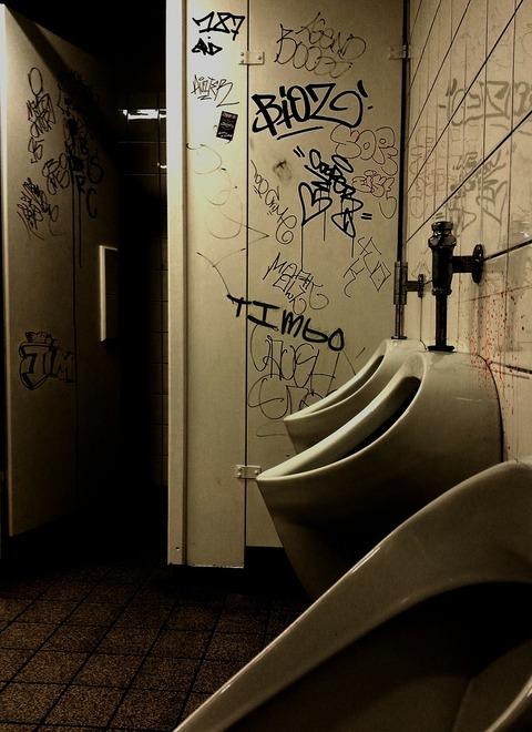 school-toilet-209058_1280