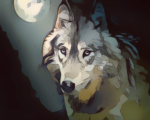 wolf-3253144_960_720