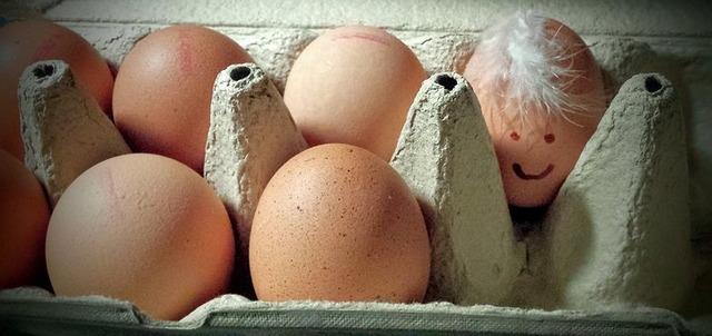 egg-2452342__340