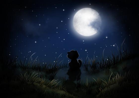 night-5130136_1920