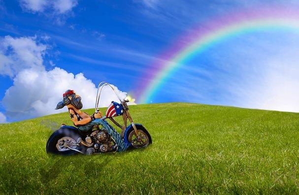 biker-2693242_960_720