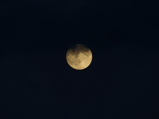 moon-141292_960_720