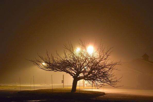 fog-2056377_960_720