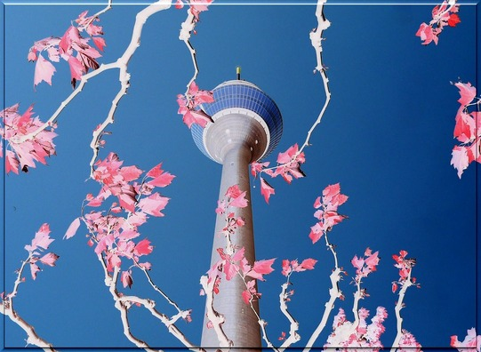 tv-tower-248672_960_720