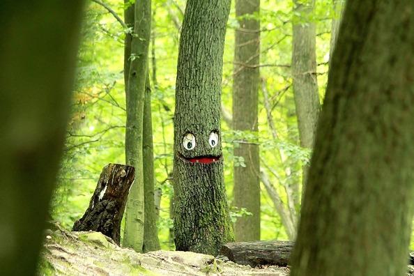 tree-1547335_960_720