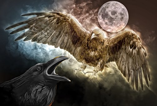 eagle-3916837__340