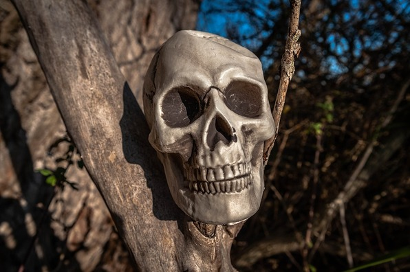 skull-and-crossbones-3802859_960_720