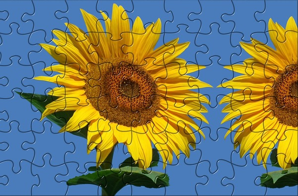 puzzle-4538605_960_720