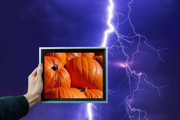 pumpkin-2777779_960_720
