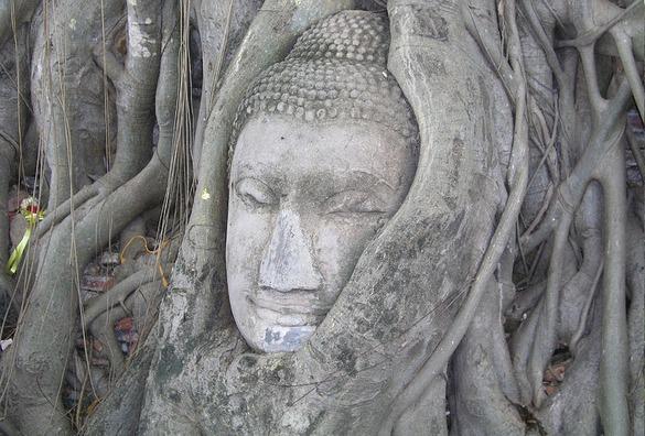 buddha-1386988_960_720