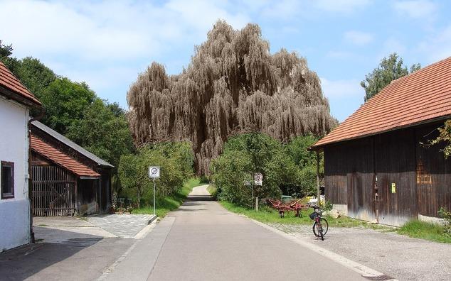 hamlet-of-bergen-2085938_960_720