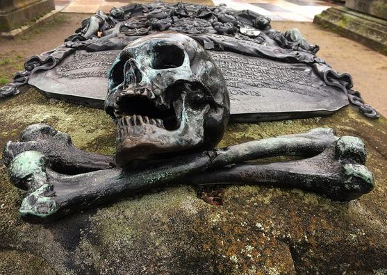 skeleton-3076727_960_720